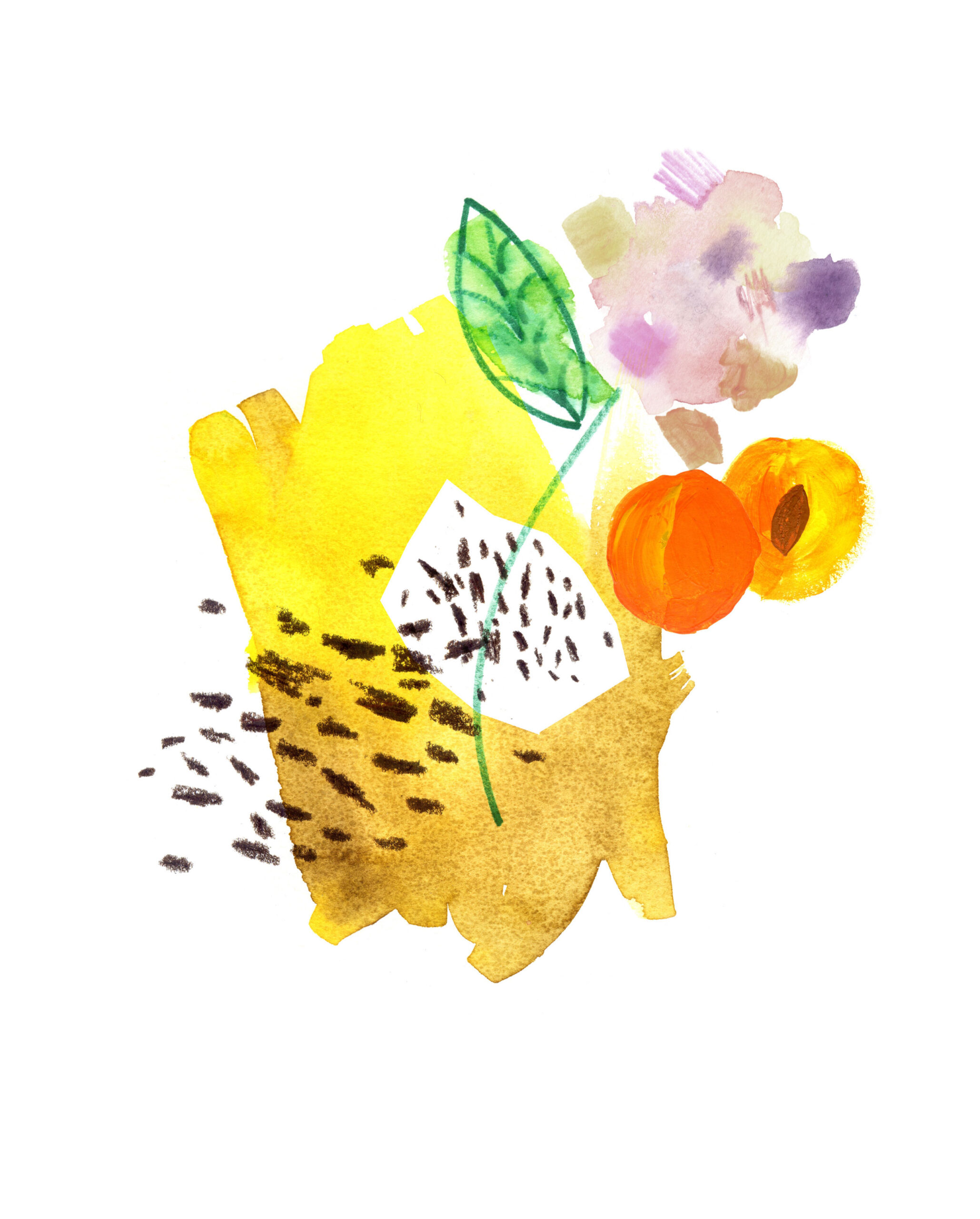 Coffee illustration – Heka London, sensory design studio